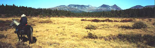 Panorama of our hunting territory